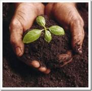 Buscando o crescimento espiritual