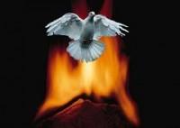 O batismo nas águas e o batismo no fogo