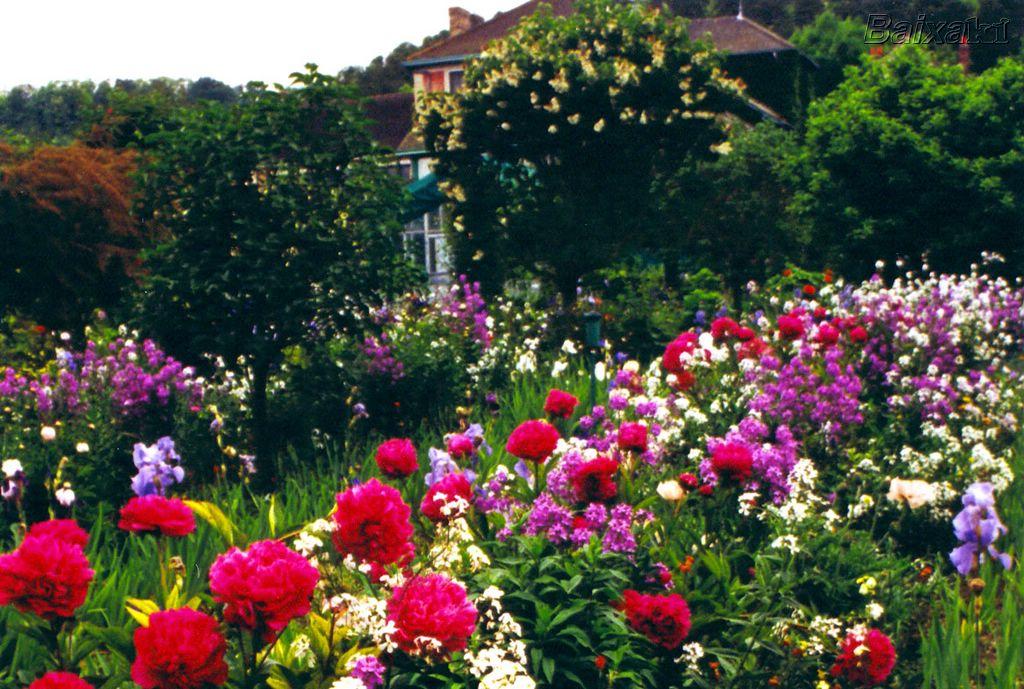 Restaurando os jardins de nossas vidas estudos b blicos - Fotos de flores de jardin ...