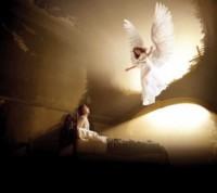 Considerações Sobre o Corpo e Sexo dos Anjos