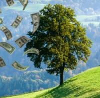 A prosperidade segundo a Bíblia