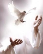 Aprendendo a Cuidar dos Bens Materiais, Para Cuidar do Espiritual.