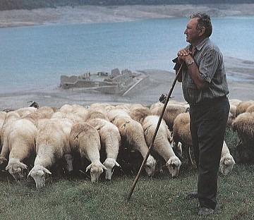 ... tentar esboçar uma explicação sobre o que faz um pastor pastor não