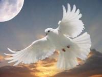 A Dispensação do Espírito Santo